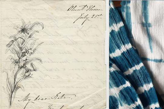A papyrus postcard on the left with a perennial plant sprouting from the bottom left corner, a worn out cloth with a striped pattern on the right