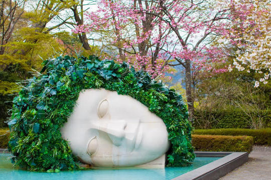 white sculpture of a head covered in ivy. The head lays on its side in a pool of water