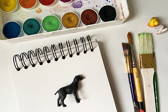 Art Supplies and Toy Animals