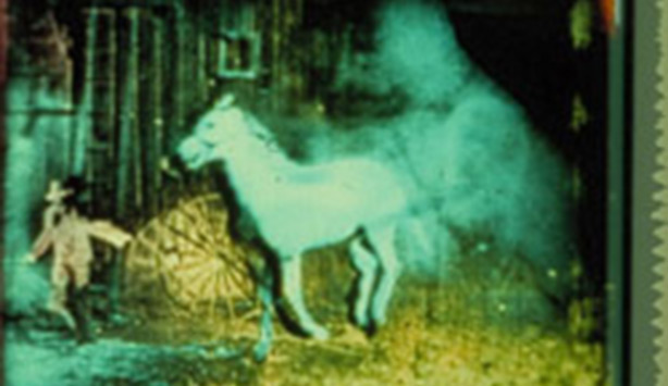 Still from BERLIN HORSE by Malcolm LE GRICE